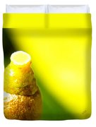 Baby Lemon On Tree Duvet Cover by Ben and Raisa Gertsberg