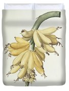 Bananas Duvet Cover by Pierre Joseph Redoute