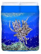 Beautiful marine plants 1 Duvet Cover by Lanjee Chee