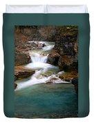 Beauty Creek Cascades Duvet Cover by Larry Ricker