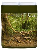 Branching Out In Costa Rica Duvet Cover by Madeline Ellis