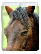 Brown Horse With Sultry Eye . R5907 Duvet Cover by Wingsdomain Art and Photography
