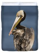 Brown Pelican Preening La Jolla Duvet Cover by Sebastian Kennerknecht
