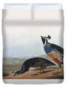 Californian Partridge Duvet Cover by John James Audubon