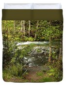 Clear Mountain Stream Duvet Cover by Carol Groenen
