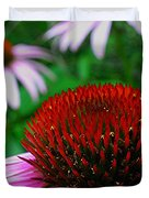 Coneflowers Duvet Cover by Juergen Roth