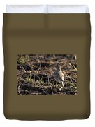 Crested Lark Duvet Cover by Cliff  Norton