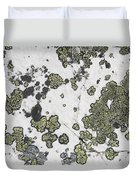 Detail Of Lichen On A White Rock Lake Duvet Cover by Michael Interisano