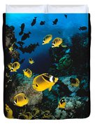 Diver And Butterflyfish Duvet Cover by Dave Fleetham - Printscapes