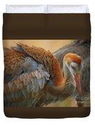 Evolving Sandhill Crane Beauty Duvet Cover by Carol Groenen