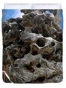 Exquisite Jade Rock - Yu Garden - Shanghai Duvet Cover by Christine Till