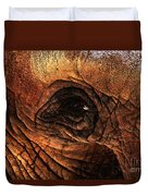 Eyes Through The Canyon Of Time Duvet Cover by Wingsdomain Art and Photography