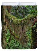 Fascinating Hoh Valley - Hoh Rain Forest Olympic National Park ONP WA USA Duvet Cover by Christine Till