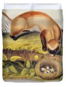 Ferret Duvet Cover by John James Audubon