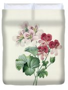 Geranium Variety Duvet Cover by Pierre Joseph Redoute