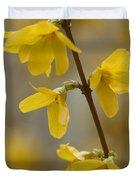 Golden Forsythia Duvet Cover by Kathy Clark