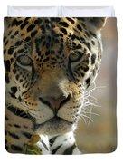Gorgeous Jaguar Duvet Cover by Sabrina L Ryan