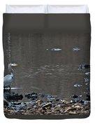 Great Blue Heron Wading 1 Duvet Cover by Douglas Barnett