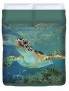 Green Sea Turtle Chelonia Mydas Duvet Cover by Tim Fitzharris