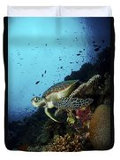 Green Sea Turtle Resting On A Plate Duvet Cover by Mathieu Meur