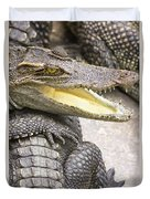 Group Of Crocodiles Duvet Cover by Jorgo Photography - Wall Art Gallery
