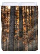 Heron Pond Morning Mist Duvet Cover by Steve Gadomski