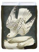 Iceland Or Jer Falcon Duvet Cover by John James Audubon