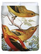 IIwi Duvet Cover by Hawaiian Legacy Archive - Printscapes