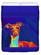 Italian Greyhound  Duvet Cover by Jane Schnetlage