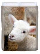 Lamb Duvet Cover by Michelle Calkins