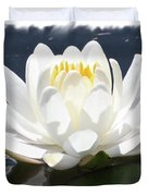 Large Water Lily With White Border Duvet Cover by Carol Groenen