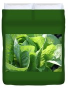 Leaf Lettuce Duvet Cover by Lauri Novak