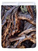Limber Pine Roots Duvet Cover by Leland D Howard