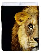 Lion Art - Face Off Duvet Cover by Sharon Cummings