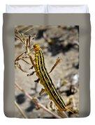 Living Desert Duvet Cover by Christine Till