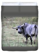 Lotta Bull Duvet Cover by Jan Amiss Photography