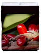 Magnolia Seeds Duvet Cover by Christopher Holmes