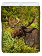 Moose Duvet Cover by Sebastian Musial