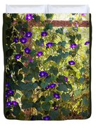 Morning Glories Duvet Cover by Margie Hurwich