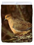 Mourning Dove at Dusk Duvet Cover by Amy Tyler