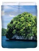 Mushroom-Shaped Island Duvet Cover by Dave Fleetham - Printscapes