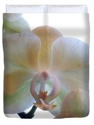 Orchids 3 Duvet Cover by Mike McGlothlen