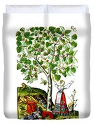 Ovids Pyramus And Thisbe Myth Duvet Cover by Photo Researchers