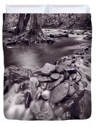 Pigeon Forge River Great Smoky Mountains Bw Duvet Cover by Steve Gadomski