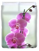 Pink Orchids Duvet Cover by Kicka Witte - Printscapes