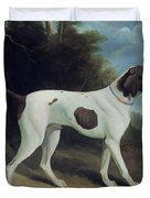Portrait of a liver and white pointer Duvet Cover by George Garrard