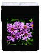 Purple Aster Blooms Duvet Cover by John Haldane