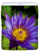 Purple Water Lily Duvet Cover by Ray Laskowitz - Printscapes