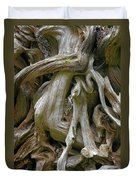 Quinault Valley Olympic Peninsula Wa - Exposed Root Structure Of A Giant Tree Duvet Cover by Christine Till