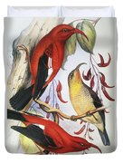 Red Hawaiian Honeycreeper Duvet Cover by Hawaiian Legacy Archive - Printscapes
